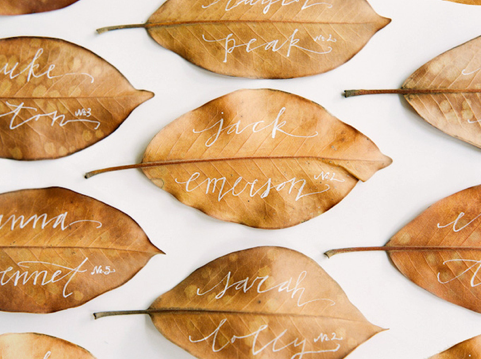 Thanksgiving Magnolia Leaf Place Cards