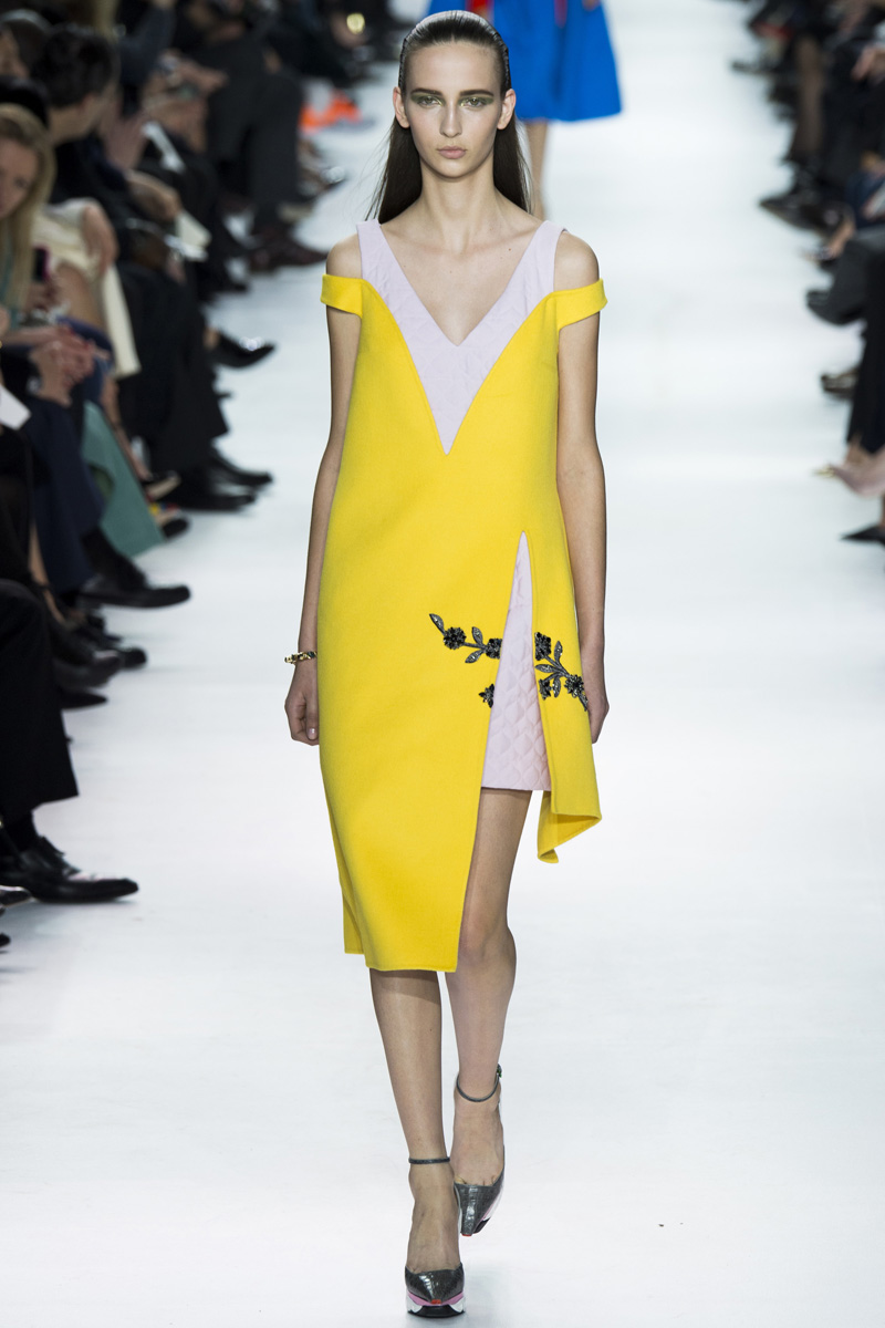 2014 Fall Winter 2015 Fashion Trends For Teensteens: Christian Dior, Fall 2014